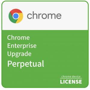 Chrome Enterprise Upgrade - Perpetual
